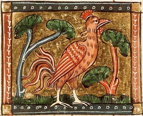 Miniatura medioevale gallina di acob van Maerlant