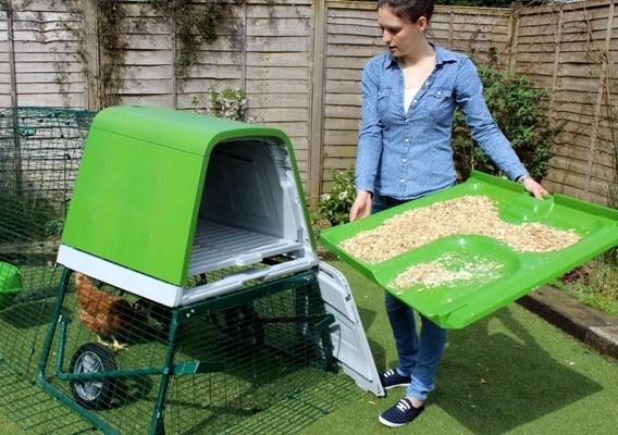 mini pollaio da giardino con cassetta in plastica (listelli in plastica)