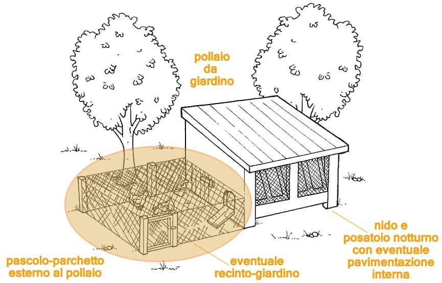 L'area a recinto del pollaio da giardino