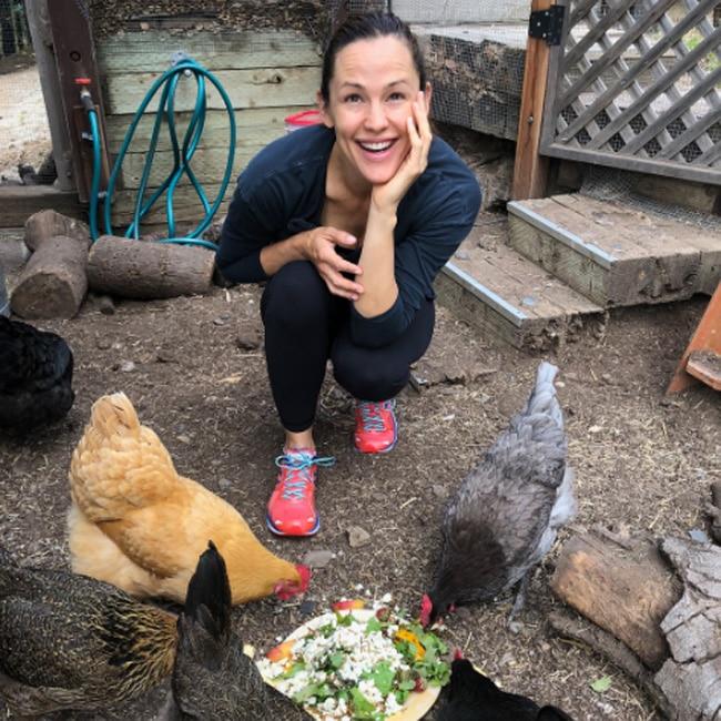 VIP Jennifer Garner festeggia compleanno delle sue galline