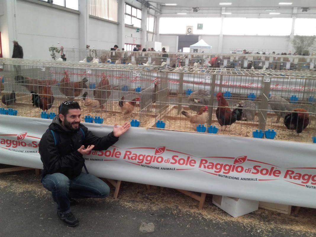 Maurizio Pavone e le sue galline mugellesi
