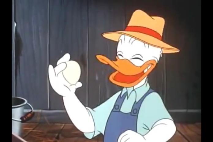 Il Pollaio Dei Personaggi Disney Galline E Galli A Topolinia E
