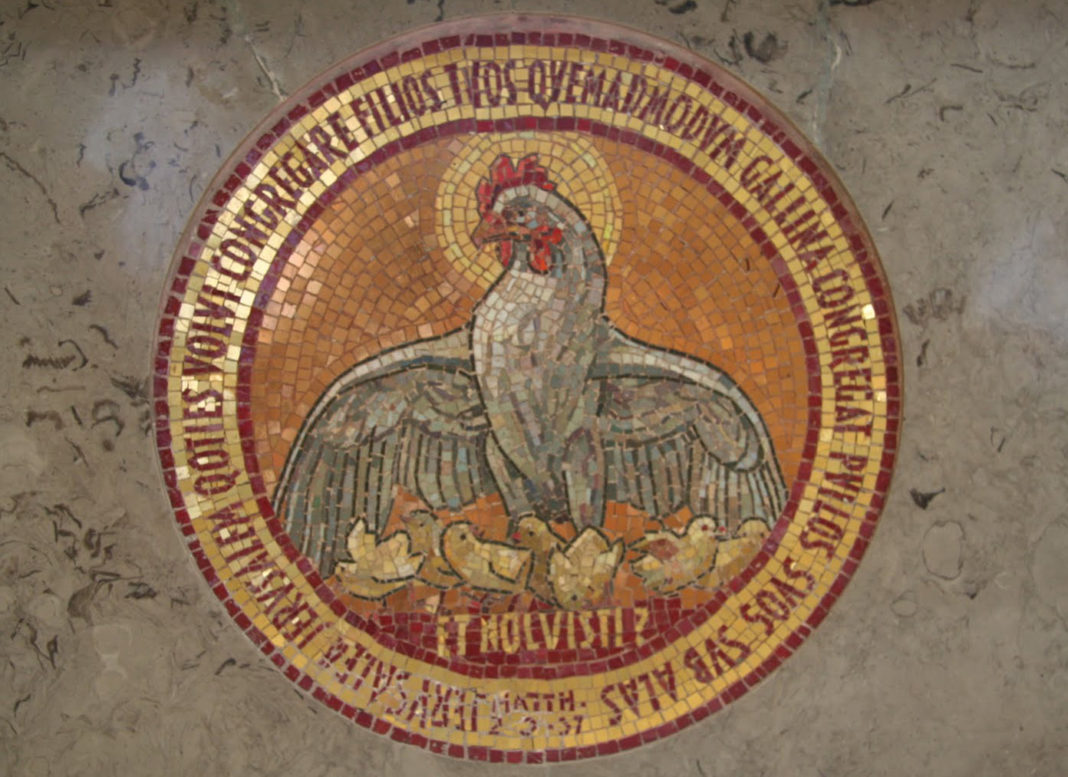 La gallina chioccia evocata nei Vangeli (mosaico)