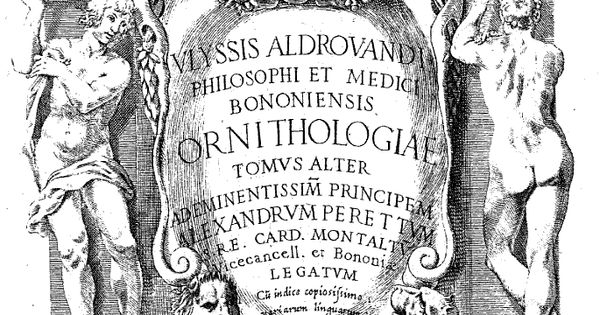 """Ornithologiae tomus alter - 1600"" di Ulisse Aldrovandi"