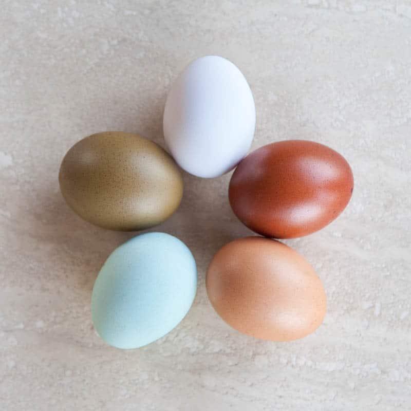 Uova di diversi colori (araucana, marans, ecc.) - Agriturismo Poggio Diavolino