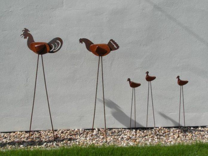Gallina: caratteristiche dell'animale e differenze con gallo e pollo | Tuttosullegalline.it