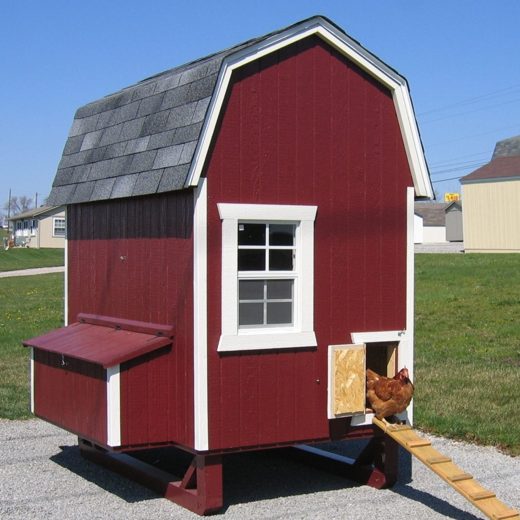 Pollaio da giardino ispirato alla struttura dei fienili statunitensi (red chicken coop)