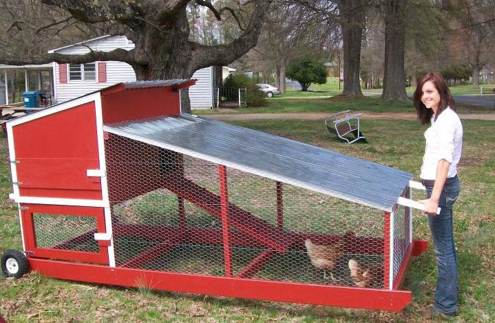 Piccolo pollaio mobile (chicken tractor) verniciato in stile fienile rosso
