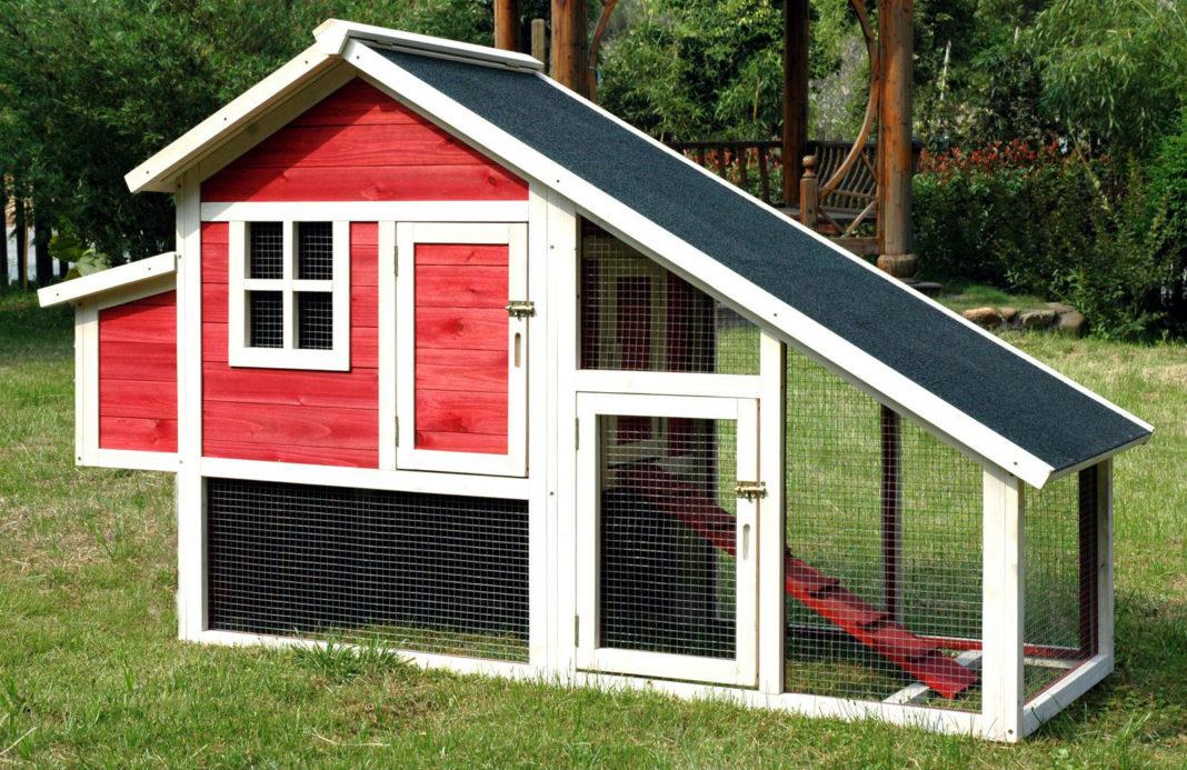 Un pollaio con corsa e tetto spiovente verniciato in stile fienile rosso