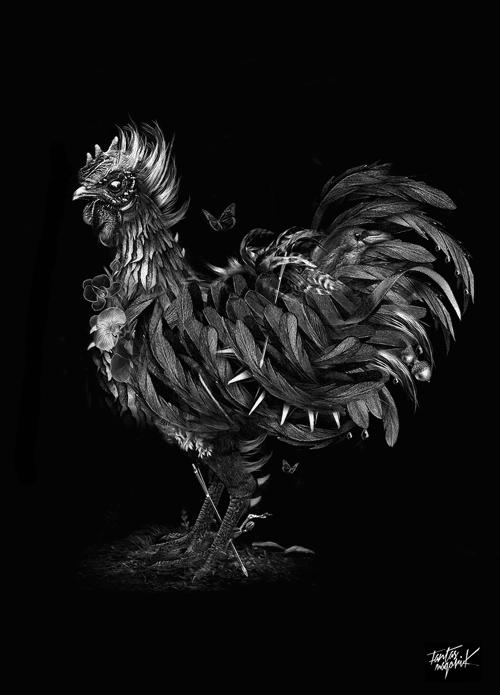 Fantasmagorik Ayam Cemani