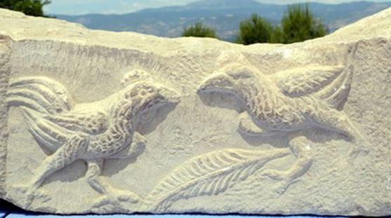 Combattimento di galli (scavi Laodicea di Frigia)