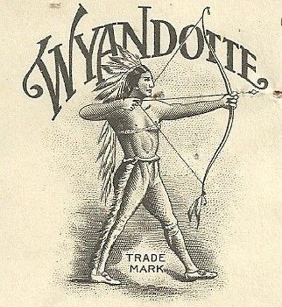 Guerriero Wyandotte