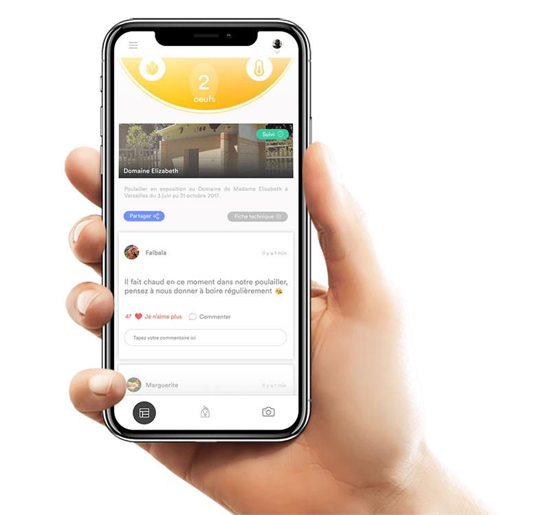 La APP per smartphone con cui gestire il pollaio Eggs iting