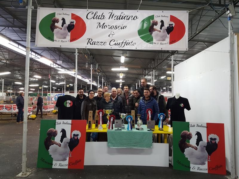 Club Italiano Moroseta e Razze Ciuffate