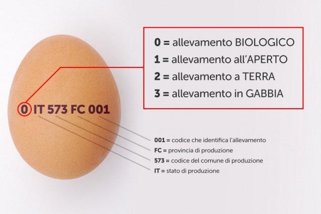 Come leggere l'etichetta delle uova