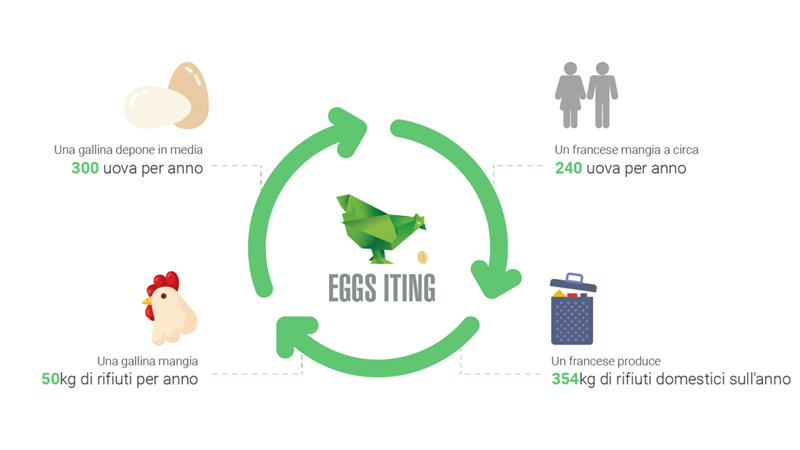 Circuito virtuoso di autoproduzione e autoconsumo di uova accompagnato dalla riduzione di rifiuti alimentari domestici