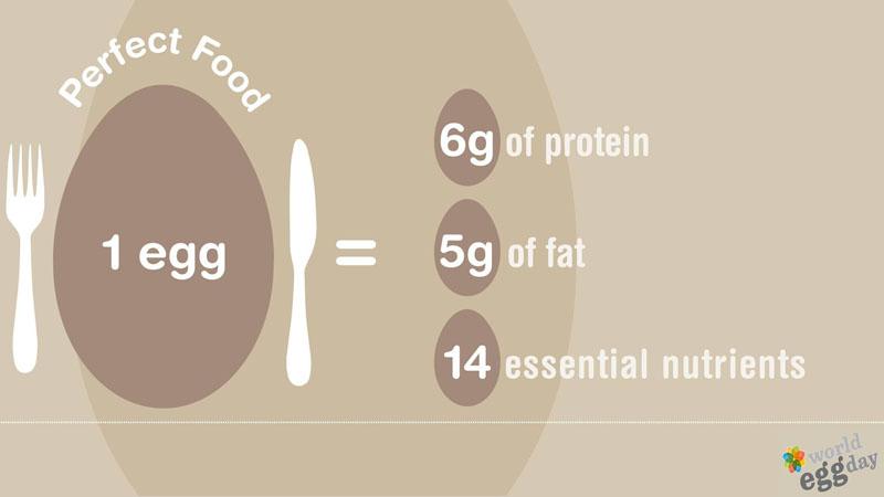 Uovo, alimento sano e nutriente