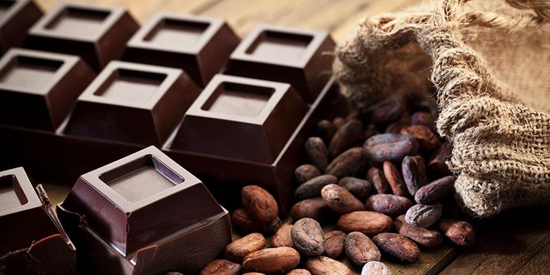 Cioccolato è tossico per le galline