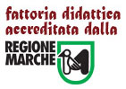 Fattoria di Campagna | Fattoria didattica e allevamento galline riconosciuta da Regione Marche