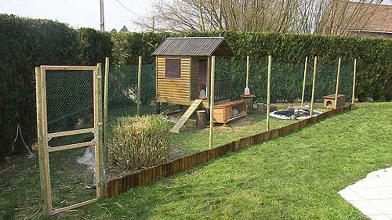 Pollaio allestito in un giardino