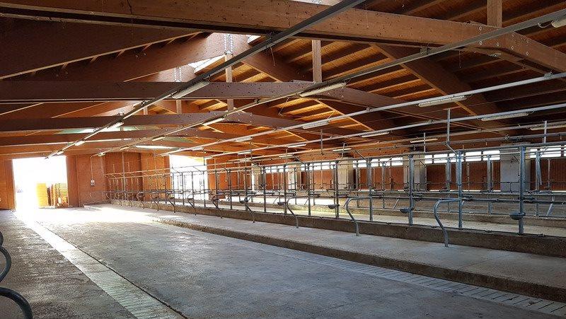 La magnifica struttura lignea della Federazione Provinciale Allevatori struttura ad inizio allestimento.