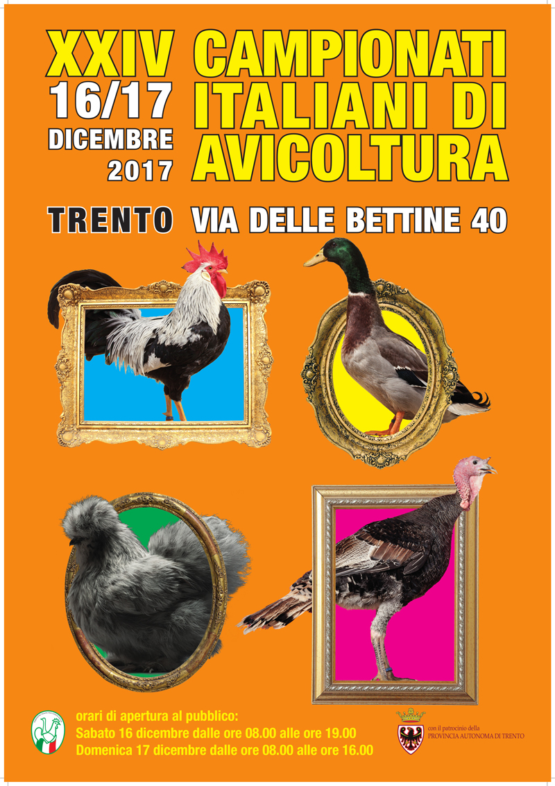 Locandina del 24° Campionato Italiano di Avicoltura 2017 tenutosi a Trento.