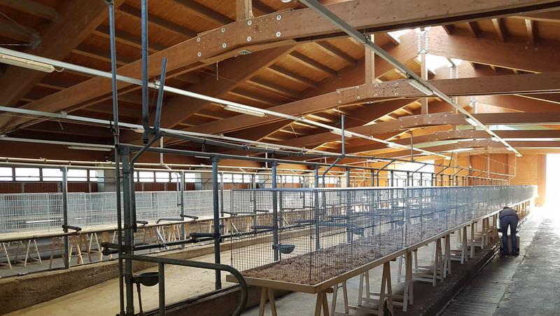 Allestimento in corso della fiera avicola 2017 a Trento
