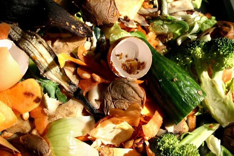 """Gli scarti vegetali che le """"cocche riciclone"""" possono contribuire a ridurre"""
