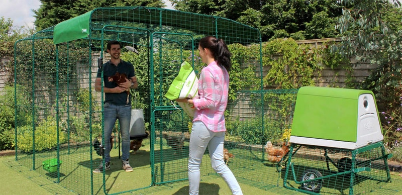 Recinti modulari walk-in per pollai Omlet