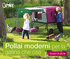 Pollai Domestici da Giardino e Accessori per Galline | Omlet