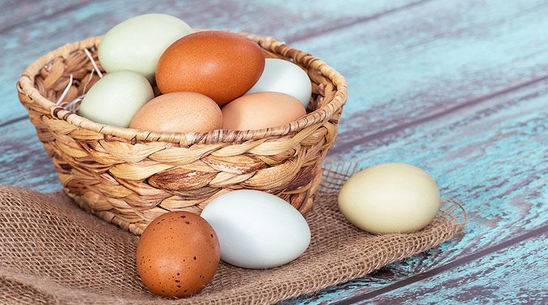 Uova fresche appena deposte dalle galline
