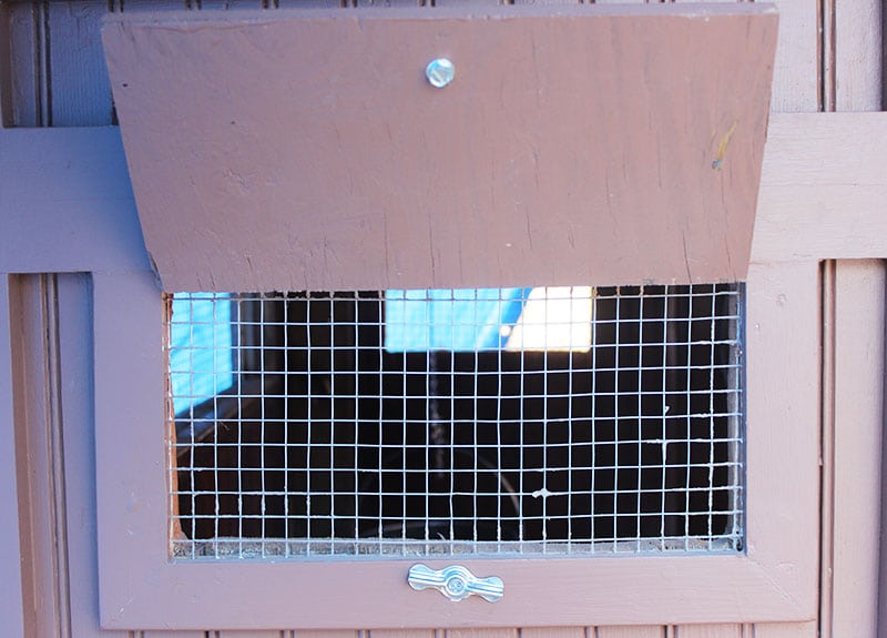 Finestra del pollaio con rete anti-predatore