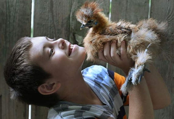 L'esperienza di pet therapy con galline di Anthony affetto da autismo e da disturbo ossessivo compulsivo (OCD).