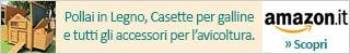 Pollai, Casette e Accessori per galline. Acquista online.