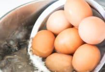 L'uovo bollito perfetto (nelle sue 3 varianti): alla coque, bazzotto e sodo | Tuttosullegalline.it