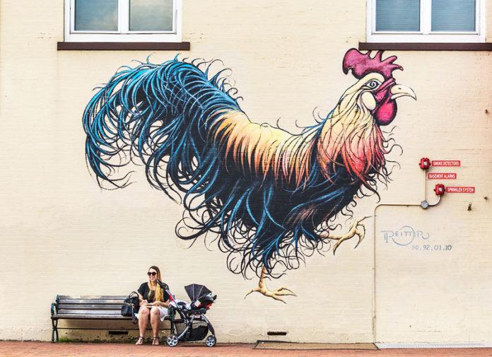 Murales di galli e galline | Tuttosullegalline.it