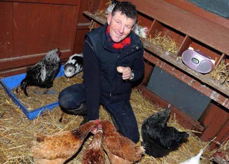 Semplice installazion emusicale nel piccolo pollaio domestico di Steve Ledsham