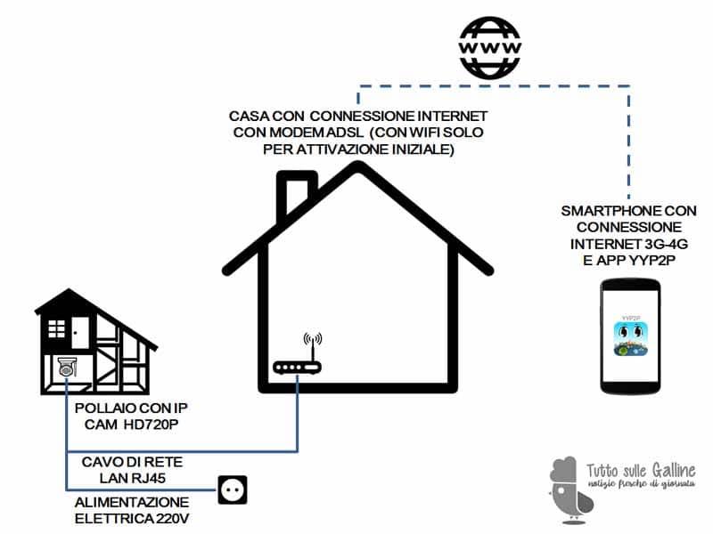 Schema di installazione IP CAM per il monitoraggio da remoto di galline e pollaio