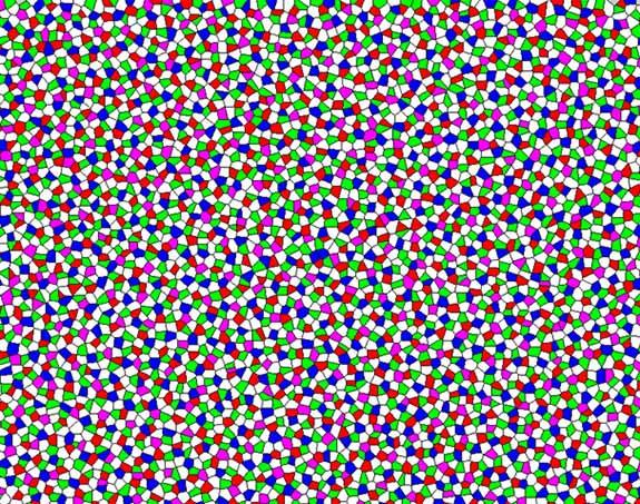 Rappresentazione della distribuzione dei cinque tipi di cellule sensibili alla luce conosciute come coni nella retina delle galline