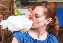 Camille e il gallo Bree, una storia d'amore a NYC | Tuttosullegalline.it