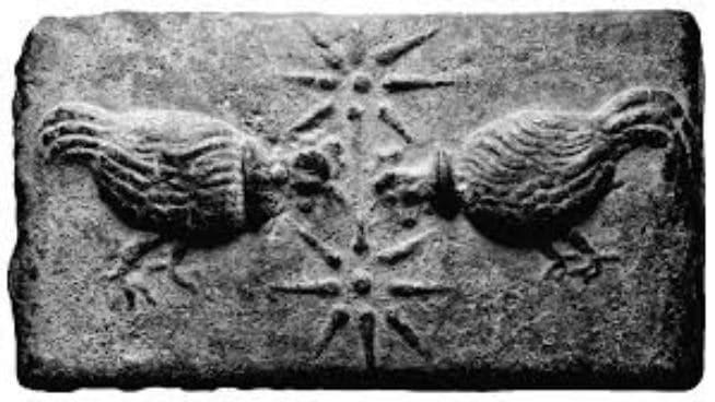 Due polli intenti a beccare due stelle a otto raggi (incisione)
