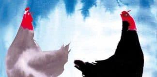 La favola delle due galline di Beppe Fenoglio (illustrata da Alessandro Sanna) | Tuttosullegalline.it