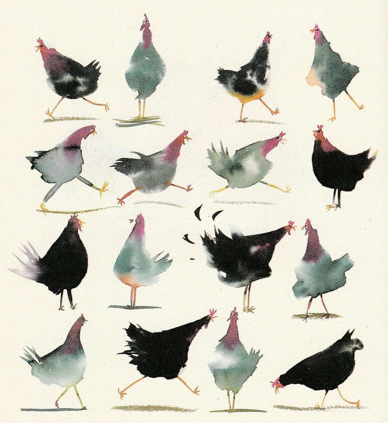 Tuja e Chica, posture e comportamento- La favola delle due galline (illustrazione Alessandro Sanna)