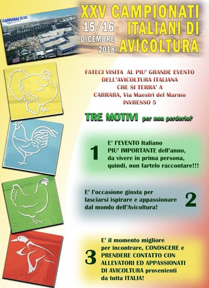 25° Campionati Italiani di Avicoltura, ecco perché partecipare