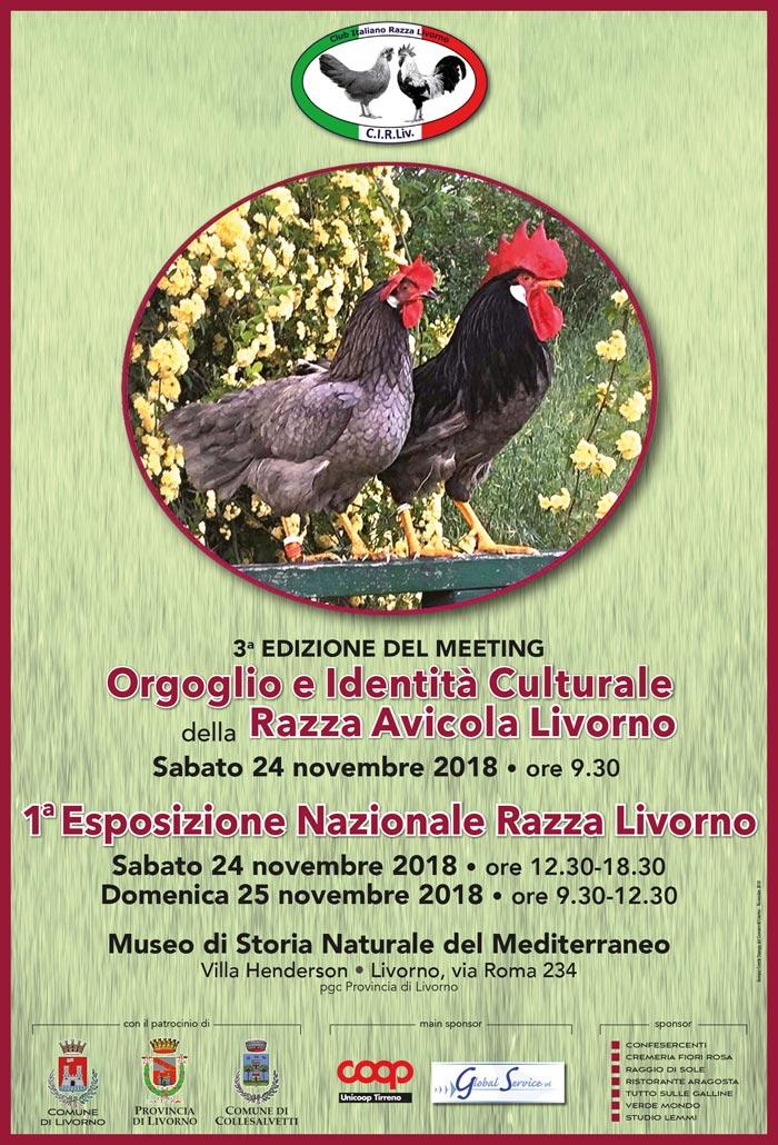 III° Convegno della Razza Avicola Livorno (24-25 Novembre 2018)