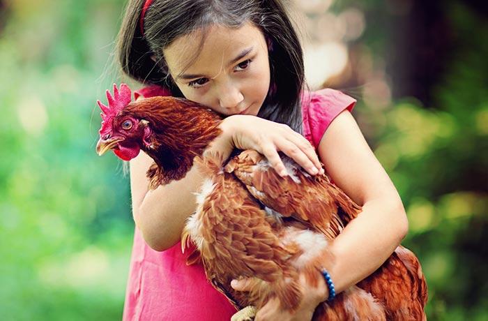 Bambina che stringe in braccio la sua gallina
