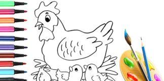 Disegni di gallina, gallo e pulcino da scaricare e colorare