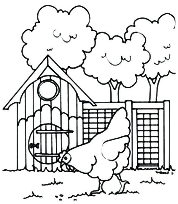 disegno di pollaio da colorare