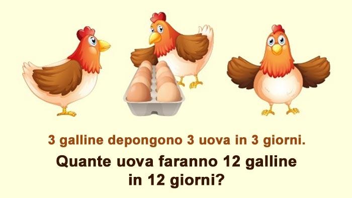 Quiz su quante uova depongono le galline