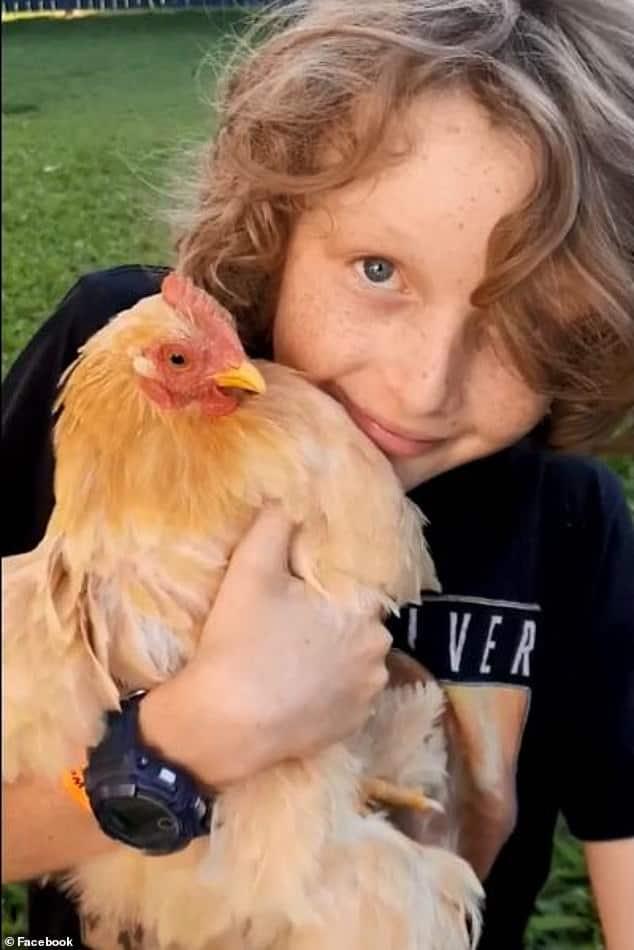 gallina Brucie con il piccolo Finn